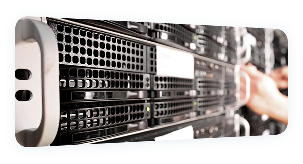 Your web hosting is fully protected, which means it will always have sufficient resources and never suffer any inconvenience from other customers.
